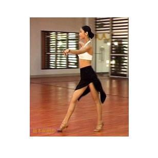 专业拉丁舞教程大全恰恰桑巴伦巴牛仔斗牛舞蹈视频教程舞蹈教程(tbd)